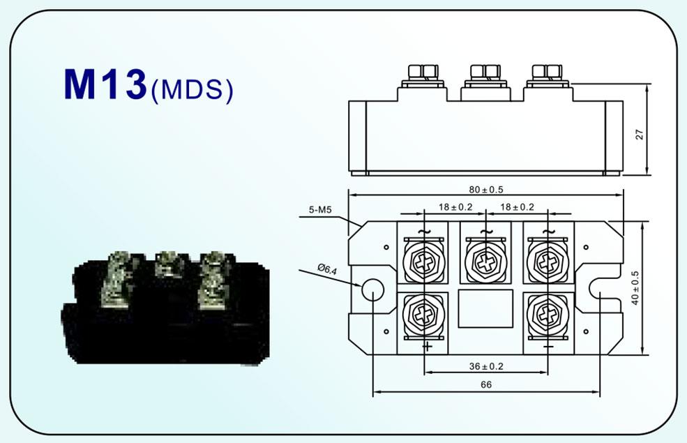 M13(MDS)