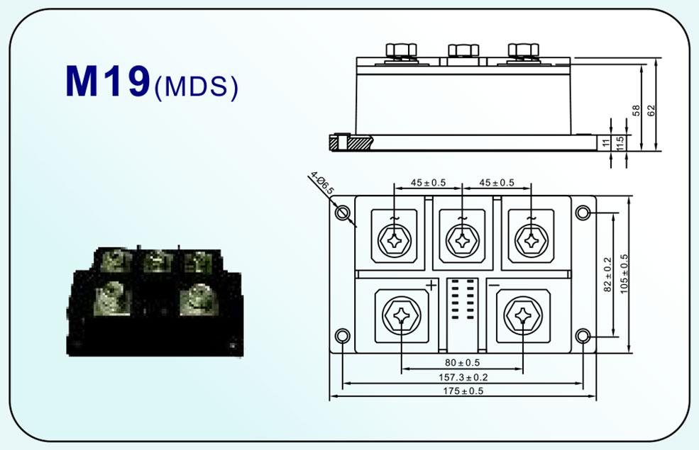 M19(MDS)